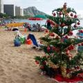Nước Mỹ: ngắm Giáng sinh muôn màu muôn vẻ